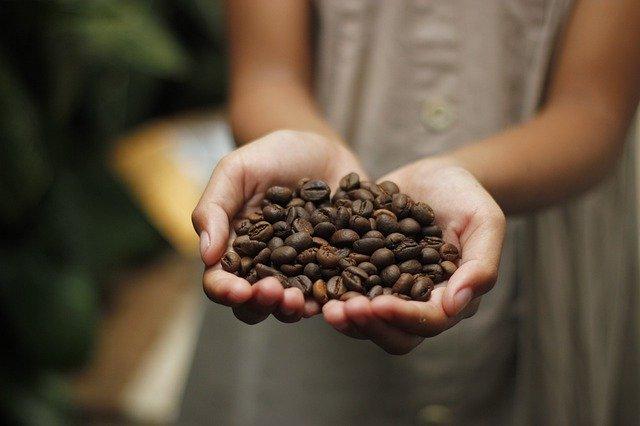 A kávé eredete