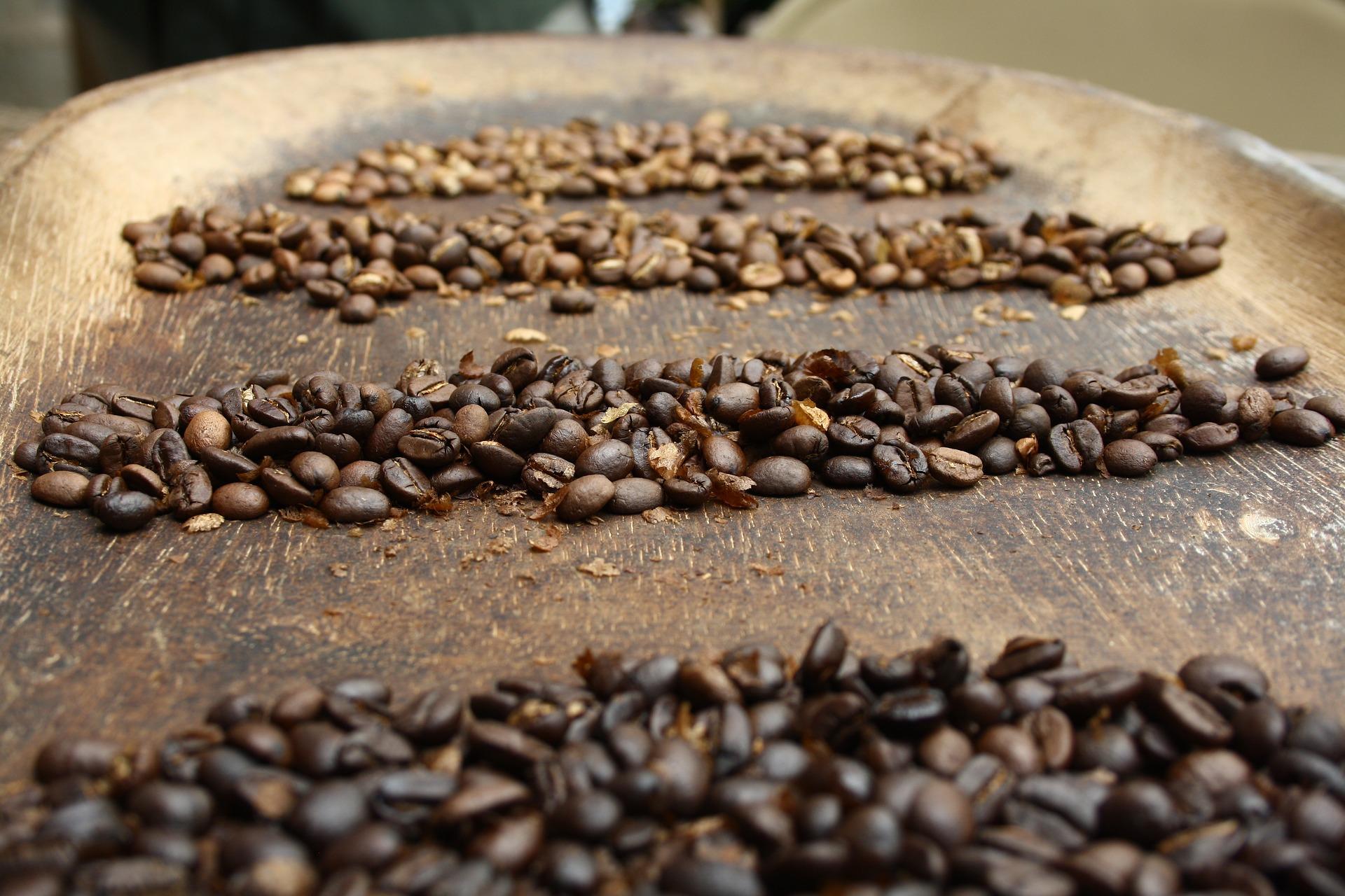 Néhány szó a kávé fajtáiról